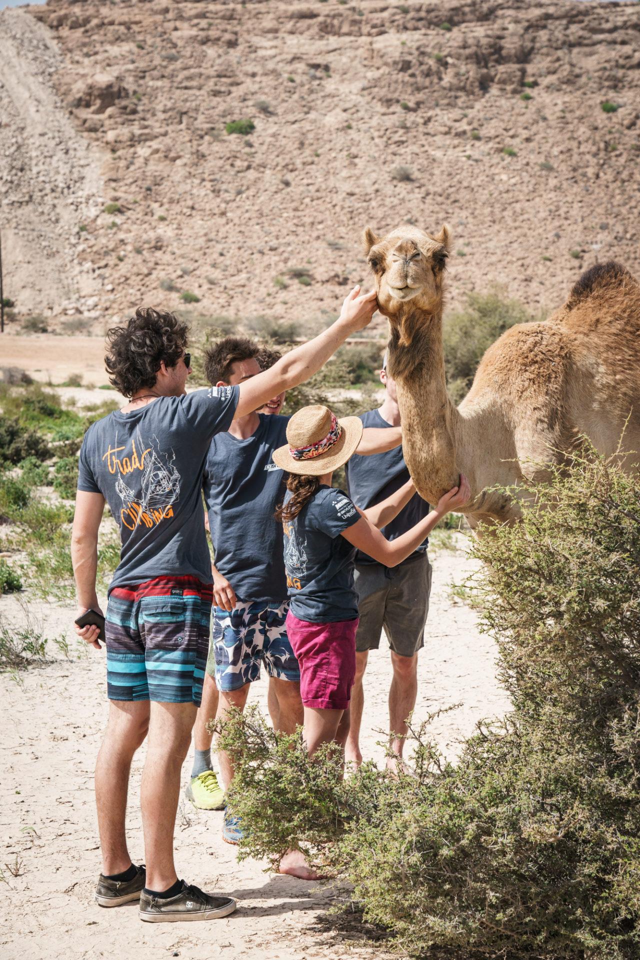 Oman @Martin Dejori l AVS