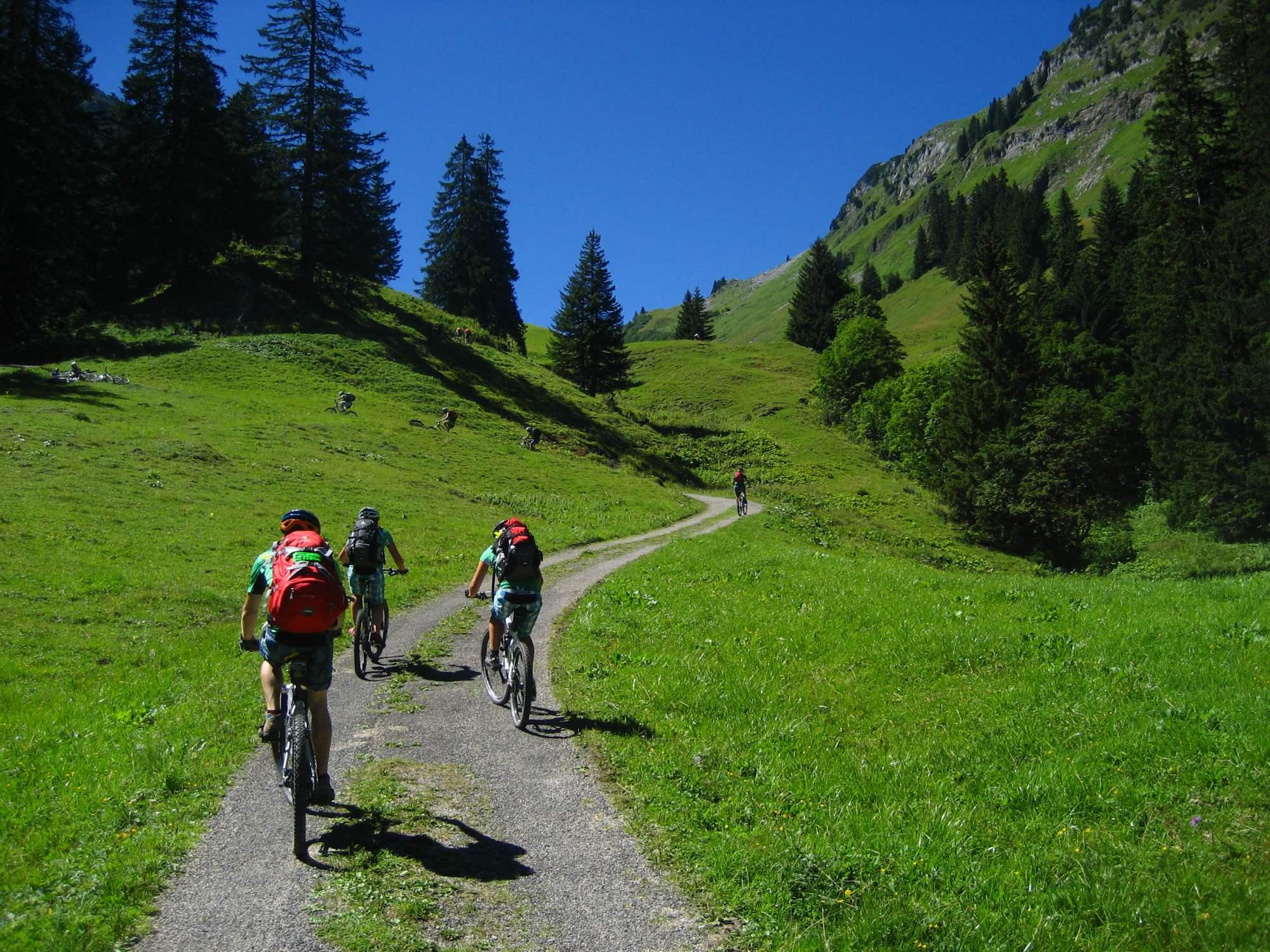 Mountainbike-Leitsystem Südtirol