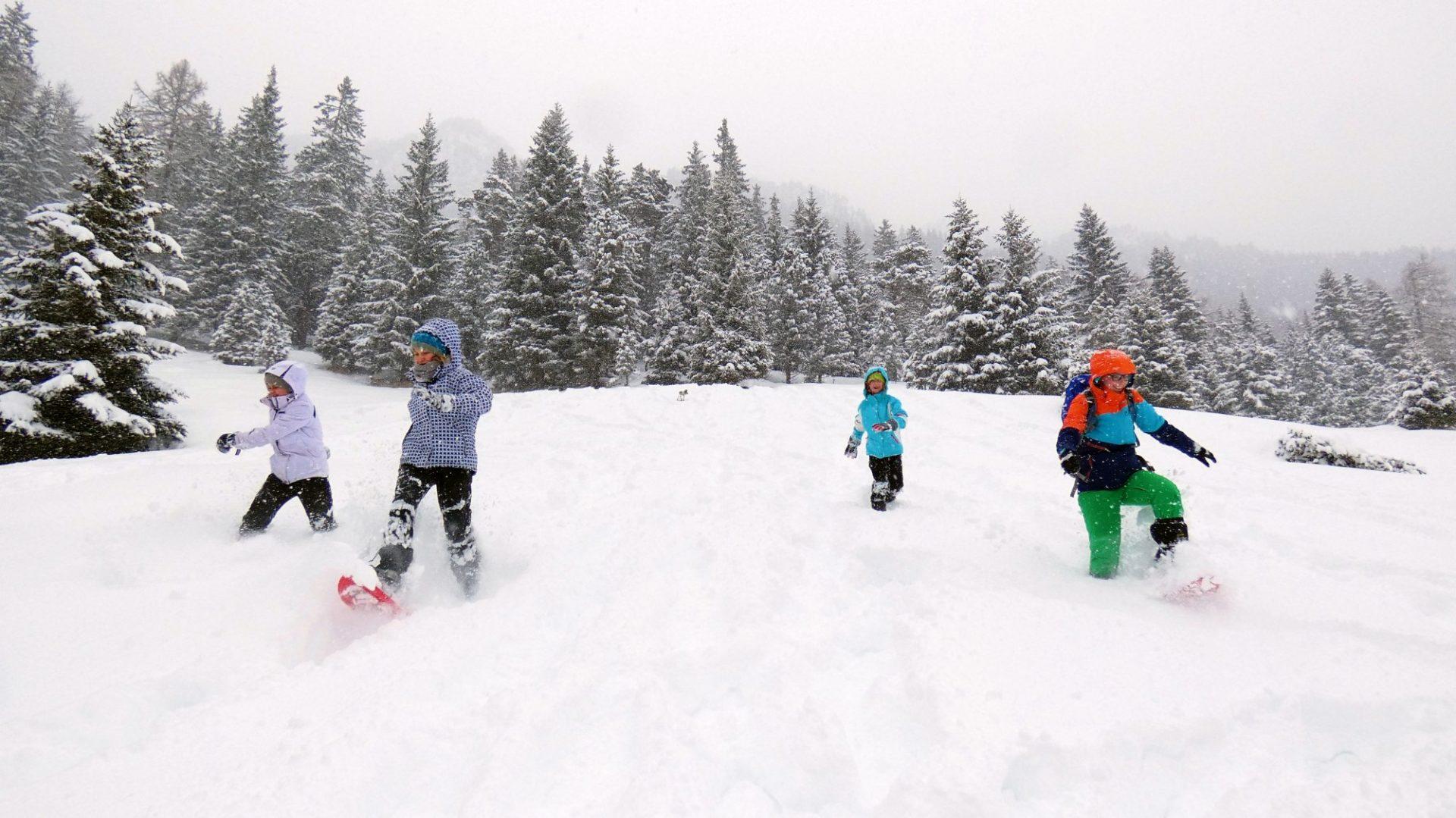 Spiele mit Schneeschuhen