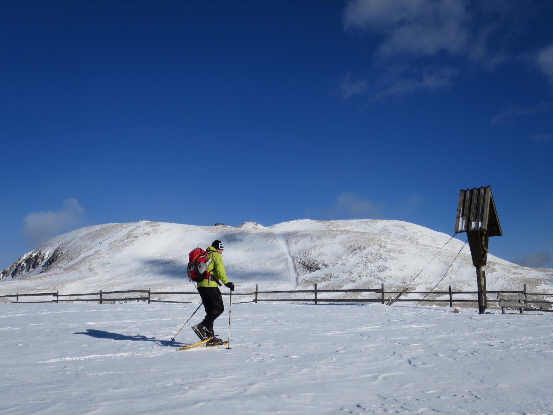 Schneeschuhwanderung: Haflinger Panoramarunde