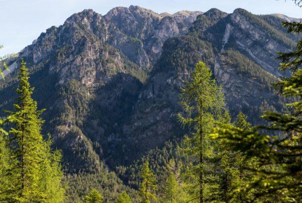 Überblick Ciastlins - Klettergarten I(c)Sepp Hackhofer