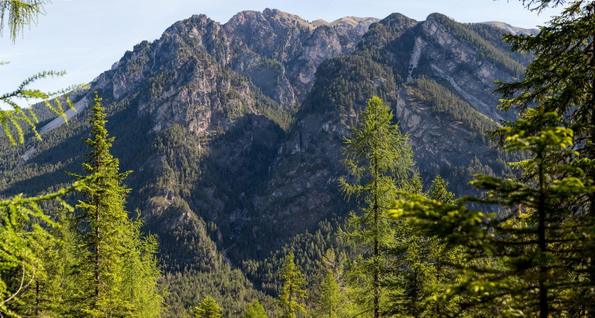 Klettern und Naturschutz: Verzicht auf Neuerschließungen