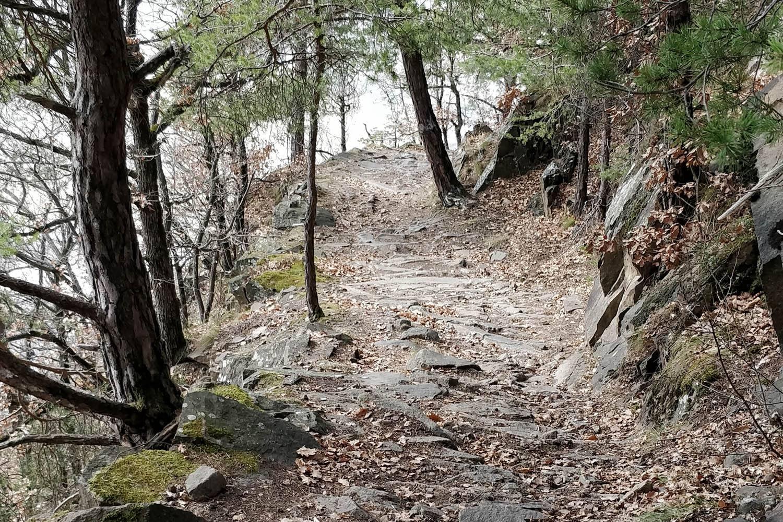 Leiferer Höhenweg