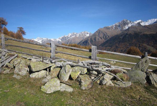 Spitzige_Lun I Berge erleben © Karin Leichter